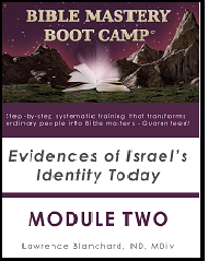 Bible Mastery Bootcamp Module Two Workbook